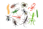 Assorted Bugzone Bugs, pack of 144   -