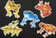 Frog Cutouts, pack of 10  -