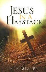Jesus in a Haystack: A Novel   -     By: C.F. Sumner