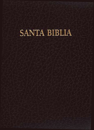 Biblia de Premios y Regalos RVR 1960, Piel Imit., Rojizo  (RVR 1960 Gift & Award Bible, Imitation Leather, Burgundy)  -