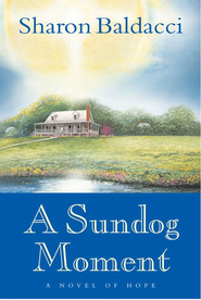 A Sundog Moment - eBook  -     By: Sharon Baldacci