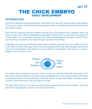 The Chick Embryo,   The Microslide  -