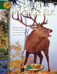 Zoobooks: Deer, Moose, and Elk   -