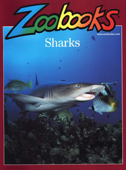 Sharks, Softcover   -