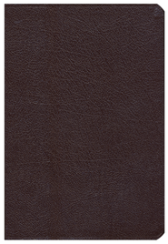 Comparative Study Bible, Revised, Burgundy Bonded Leather (NIV, Amplified, KJV & NASB Update)  -