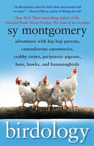 Birdology: Adventures with a Pack of Hens, a Peck of Pigeons, Cantankerous Crows, Fierce Falcons, Hip Hop Parrots, Baby Hummingbirds, and One Murderously Big Living Dinosaur (t) - eBook  -     By: Sy Montgomery