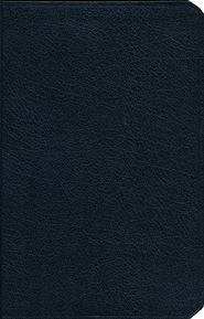 The Amplified Bible, Bonded leather, Navy   -