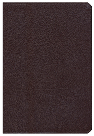 NIV Archaeological Study Bible, Bonded Leather Burgundy  1984  -              Edited By: Walter C. Kaiser Jr., Duane Garrett