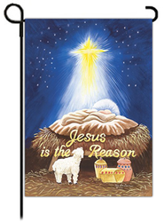 Jesus is the Reason Art Flag, Small  -     By: MaryLou Troutman