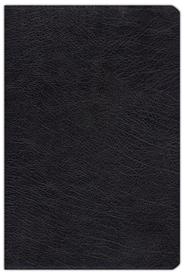 Zondervan NIV (1984) Study Bible--bonded leather, black  -