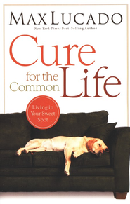 Cure for the Common Life - Slightly Imperfect  -     By: Max Lucado