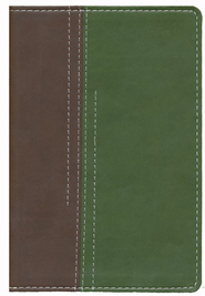 NIV Thinline Guys Edition Bible, Chocolate/Green Imitation Leather   -