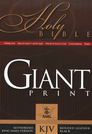 KJV Giant Print Handy Size Bible, Bonded leather, Black   -