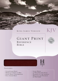 KJV Giant Print Reference Bible, Bonded leather, Burgundy   -