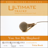You Are My Shepherd (Medium Key Performance Track w/ Background Vocals)  [Music Download] -