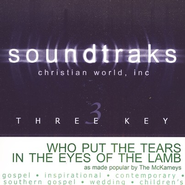 Who Put The Tears In The Eyes Of The Lamb, Accompaniment CD  - Slightly Imperfect  -              By: The McKameys