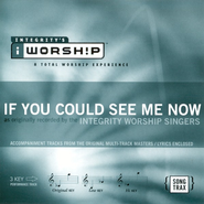 If You Could See Me Now, Accompaniment CD   -     By: Integrity Worship Singers