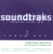 Something Beautiful, Accompaniment CD   -     By: NEEDTOBREATHE