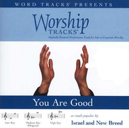 Worship Tracks - You Are Good - as made popular by Israel Houghton & New Breed [Performance Track]  [Music Download] -     By: Israel Houghton, New Breed