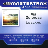 Via Dolorosa, Accompaniment CD   -     By: Leeland