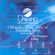 I Wonder What They're Thinking Now, Accompaniment CD   -     By: The Hoppers