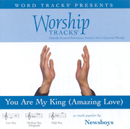 You Are My King [Amazing Love] - Medium key performance track w/ background vocals [Original Key]  [Music Download] -     By: Newsboys