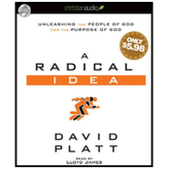 A Radical Idea: Unleashing the People of God for the Purpose of God - Unabridged Audiobook  [Download] -     Narrated By: Lloyd James     By: David Platt