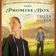 The Promise Box Audiobook  [Download] -     By: Tricia Goyer