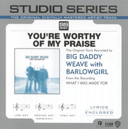 You're Worthy Of My Praise - Medium key performance track w/o background vocals  [Music Download] -     By: Big Daddy Weave