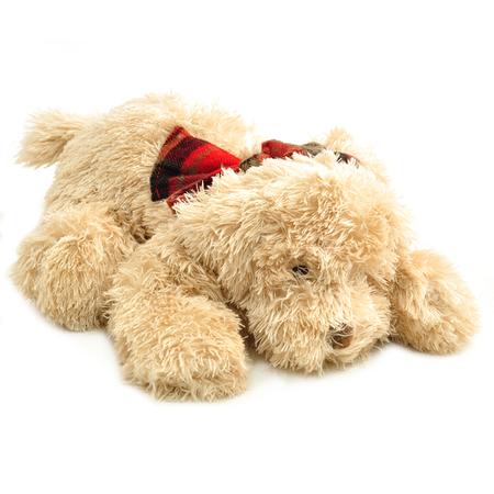 Christian musical stuffed animal dog