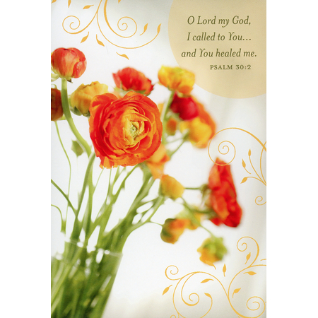 Buy e greeting cards get well - Budding Hope Get Well Cards, Box of 12