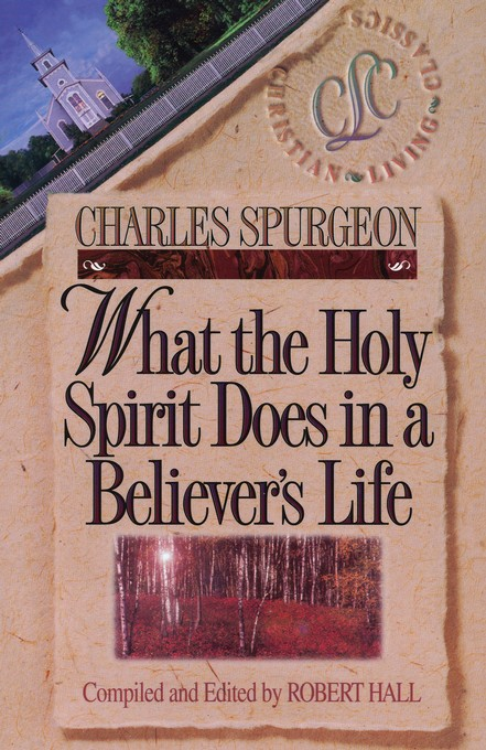 What the Holy Spirit Does in a Believer's Life