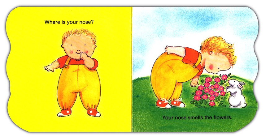 Pudgy Where is Your Nose? Book