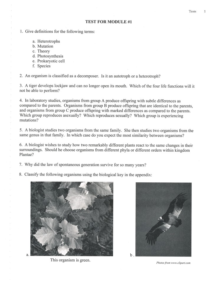 Biology, 2nd Edition, Extra Test Pages