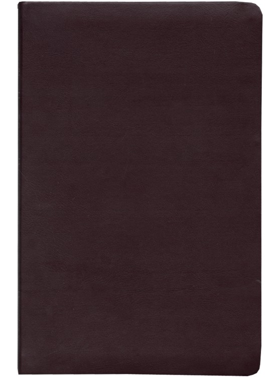 NAS Update Ultrathin Bible, Bonded Leather in burgundy