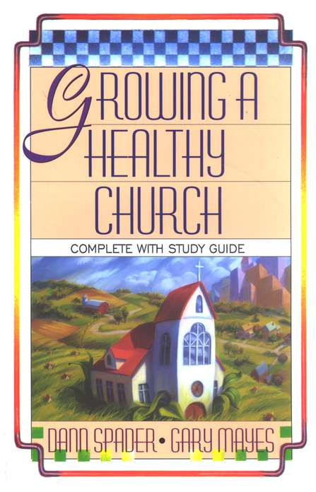 Growing a Healthy Church: The Sonlife Strategy