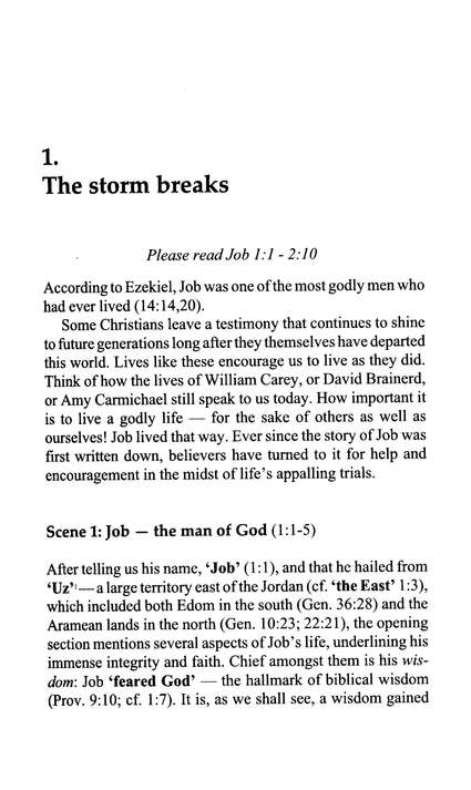 The Storm Breaks (Job), Welwyn Commentary Series