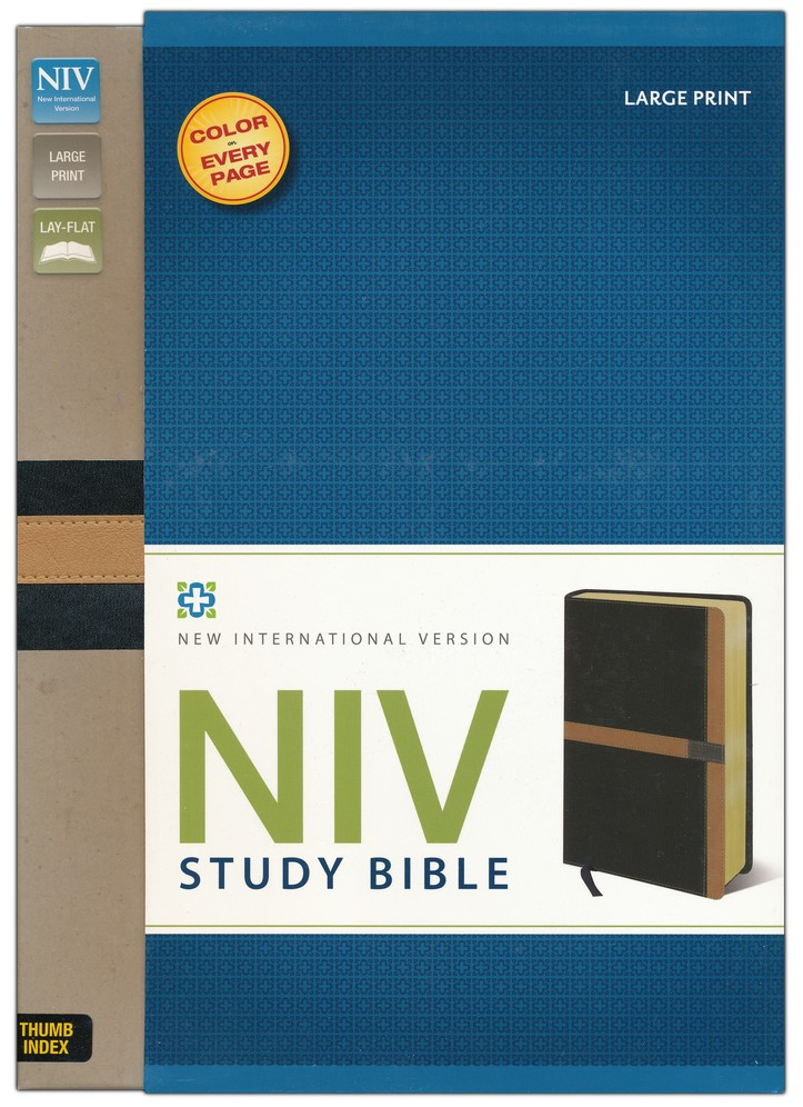 NIV Study Bible, Large Print, Soft Leather-look, Black/Camel, Thumb-indexed