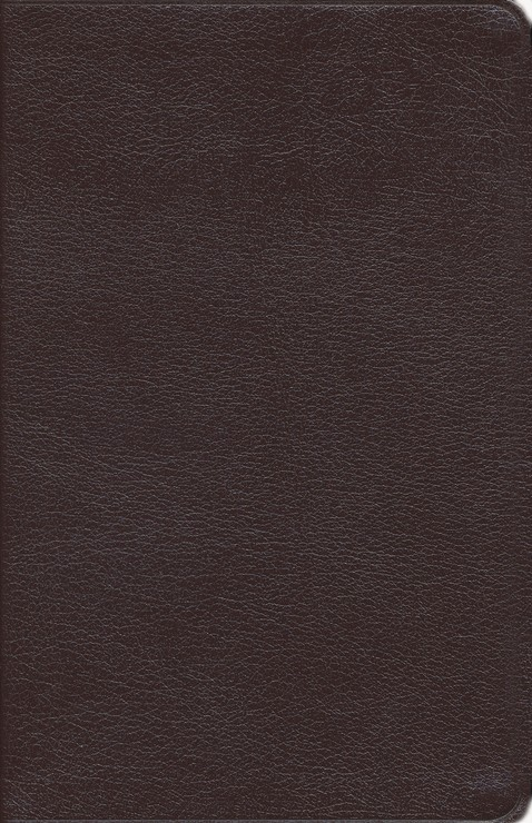 NIV Thinline Bible, Brown