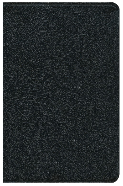 NIV Study Bible, Top Grain Leather, Black