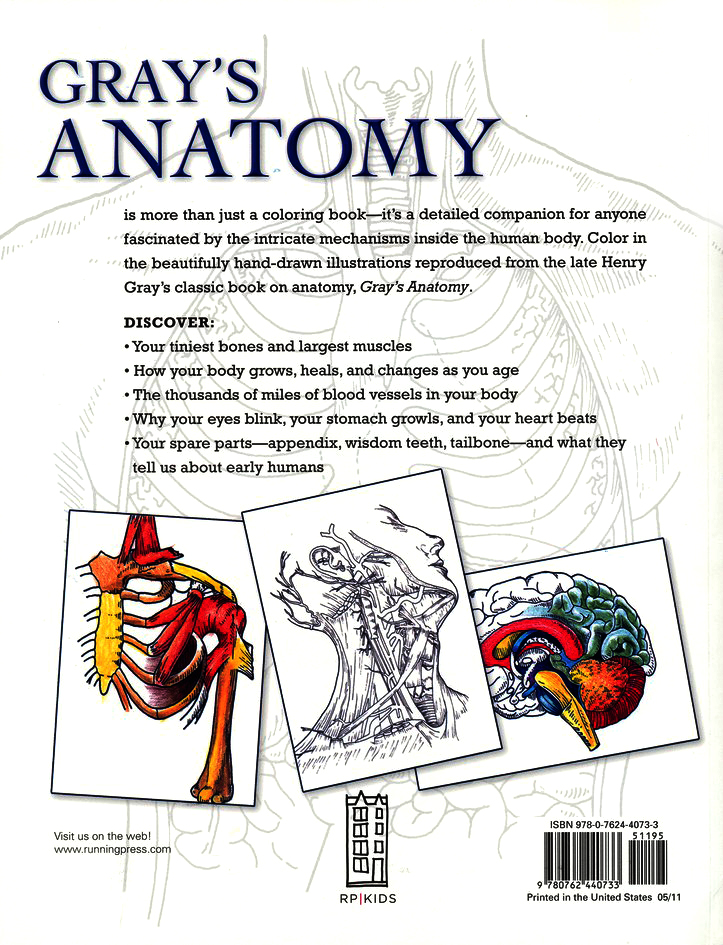 Start Exploring Gray's Anatomy: A Fact-Filled Coloring Book
