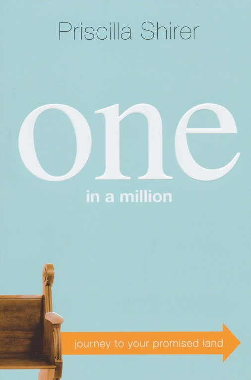 One in a Million: Journey to Your Promised Land (slightly imperfect)