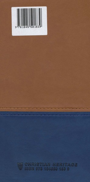Morning and Evening - Imitation leather (Matte Tan/Blue)
