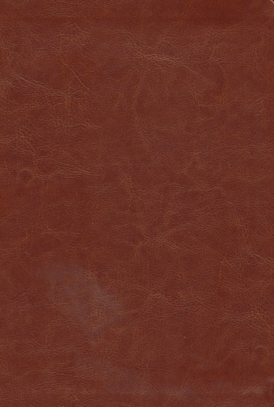 NKJV The Word for Today Bible, Imitation leather, brown