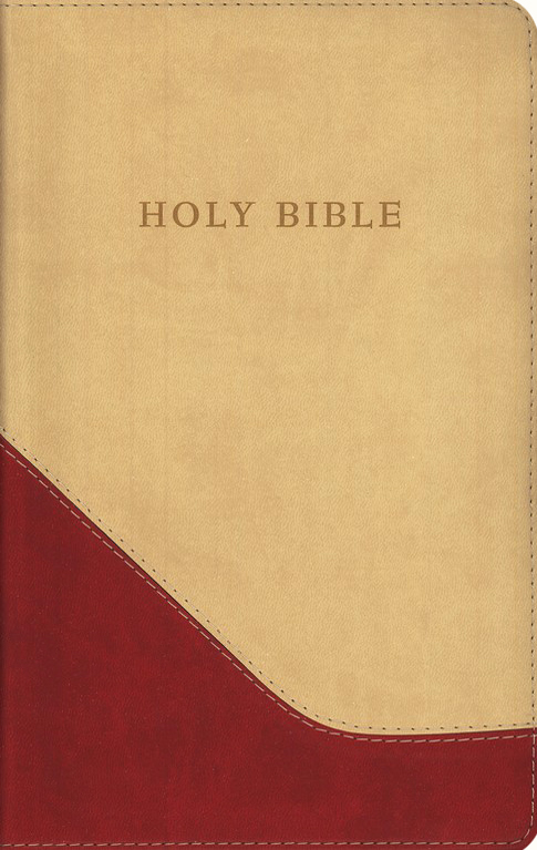 The KJV Personal-Size Giant-Print Reference Bible, Brick Red/Sand Flexisoft
