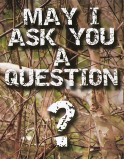 May I Ask You a Question? - Camouflage Hunter Pack of 25