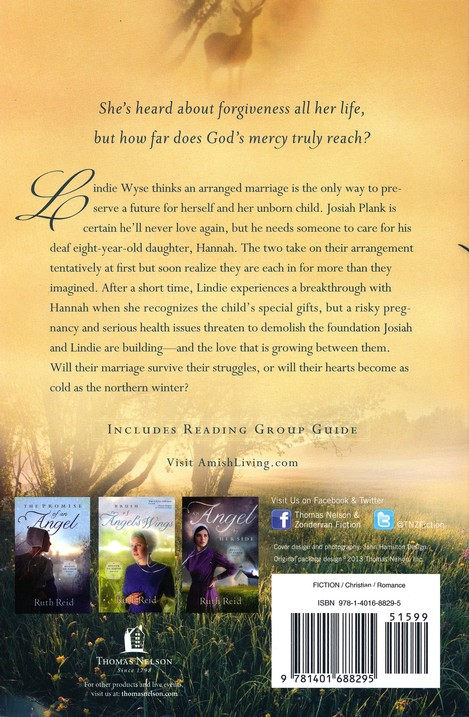 A Miracle of Hope, Amish Wonders Series #1