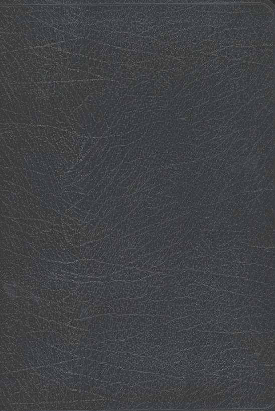 Biblia NVI Letra Gigante, piel imitada, negra  (NIV Giant Print Bible, Imitation Leather, Black)