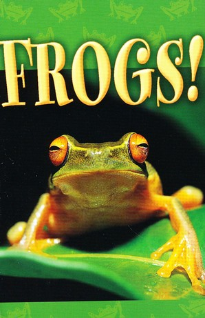Frogs! (NIV), Pack of 25 Tracts