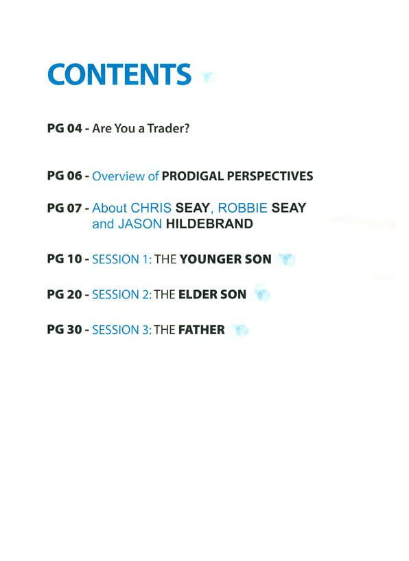 Prodigal Perspectives Workbook